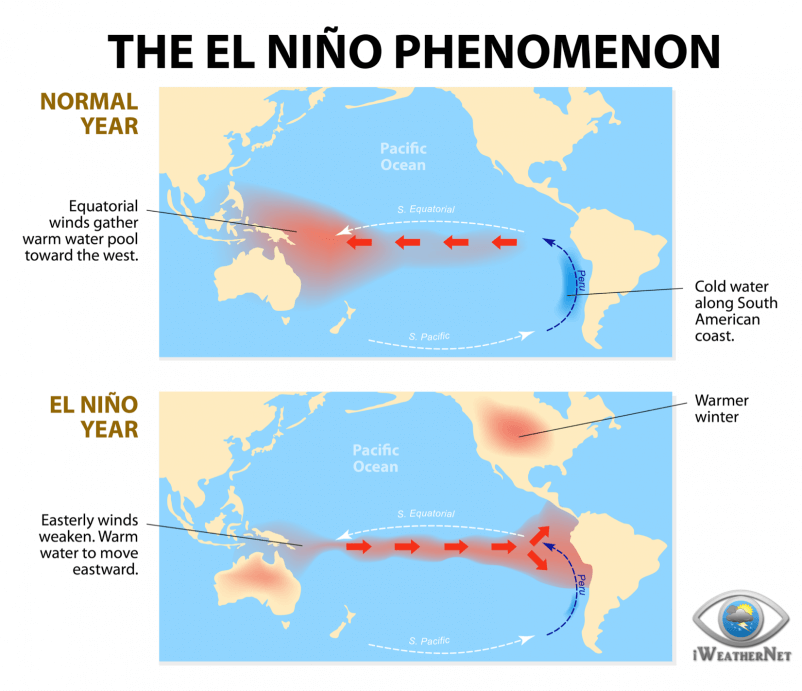 What is El Niño? This illustration shows what a typical event looks like.