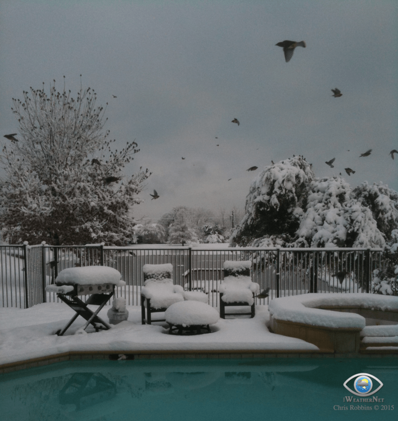 "Historic snowstorm in North Texas on 2/12/2010. DFW recorded its greatest 24-hour snowfall of all time (12.5"")."