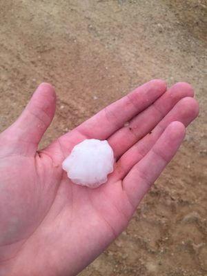 Woodward hail